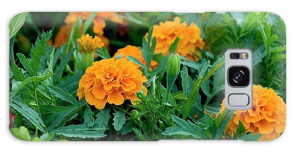 Marigolds Galaxy Case
