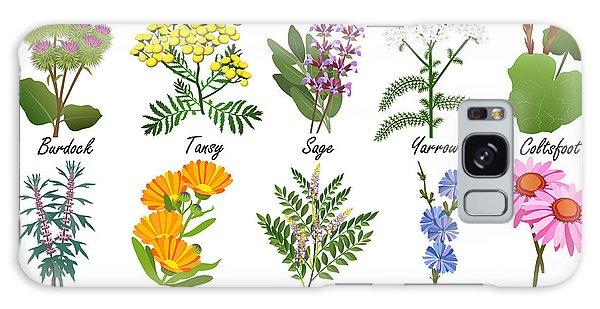 Healing Galaxy Case - Medicinal And Healing Herbs Collection by Tatiana Liubimova