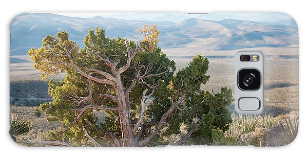 Mesquite In Nevada Desert Galaxy Case