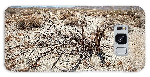Mesquite In The Desert Sun Galaxy Case