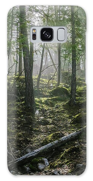 Misty Forest Morning Galaxy Case
