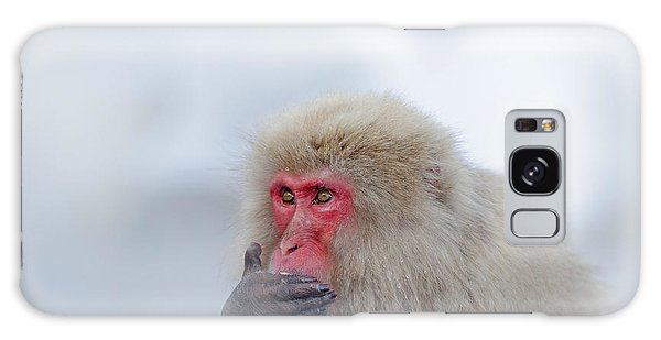Bath Galaxy Case - Monkey Japanese Macaque, Macaca by Ondrej Prosicky