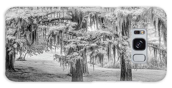 Galaxy Case featuring the photograph Moss Laden Trees 4132 by Donald Brown