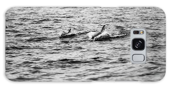Mother Dolphin And Calf Swimming In Moreton Bay. Black And White Galaxy Case