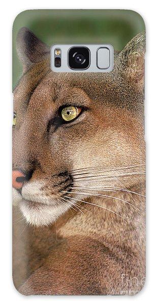 Mountain Lion Portrait Wildlife Rescue Galaxy Case