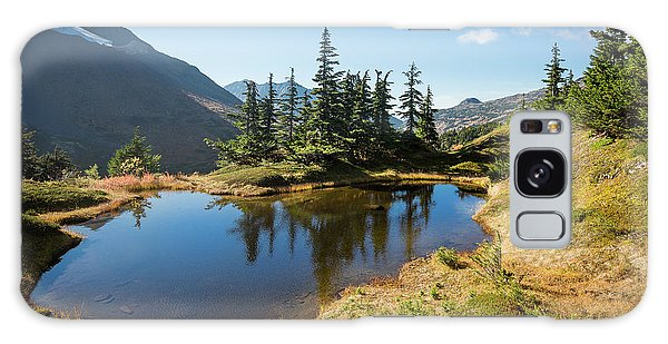 Mountain Pond Galaxy Case
