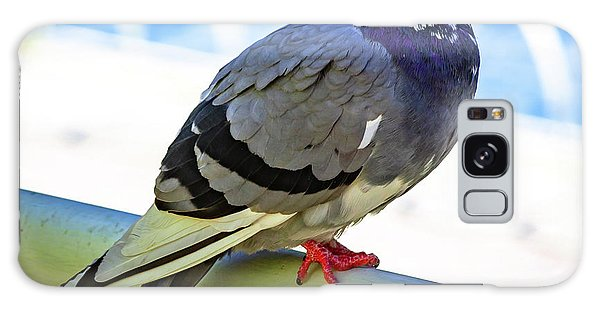 Mr. Pigeon Galaxy Case