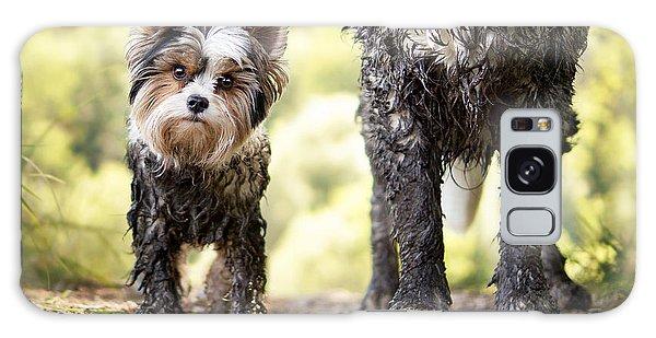 Bath Galaxy Case - Muddy Little Dog Stands Next To A Muddy by Stickler