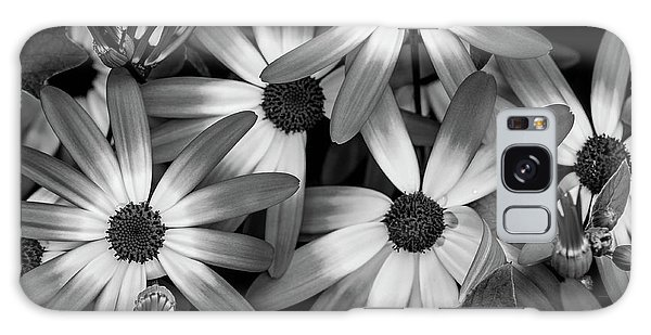 Multiple Daisies Flowers Galaxy Case
