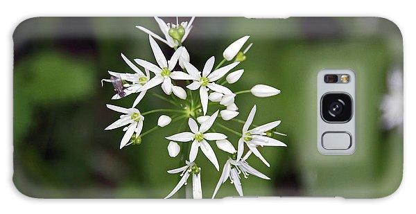 Neston. Wild Garlic. Galaxy Case