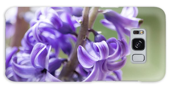 New Year Purple Galaxy Case