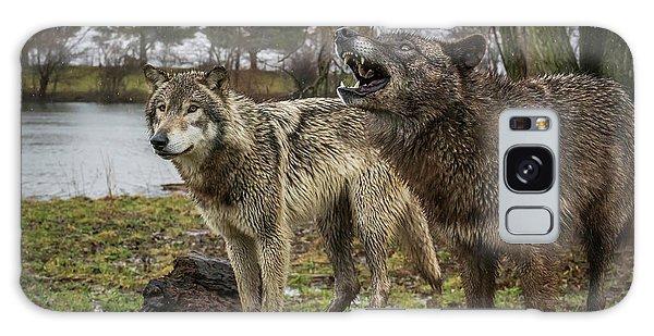 Noisy Wolf Galaxy Case