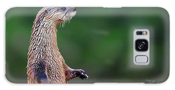 Norman The Otter Galaxy Case