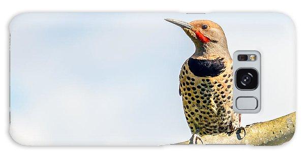 Song Bird Galaxy Case - Northern Flicker, Colaptes Auratus by Karamysh
