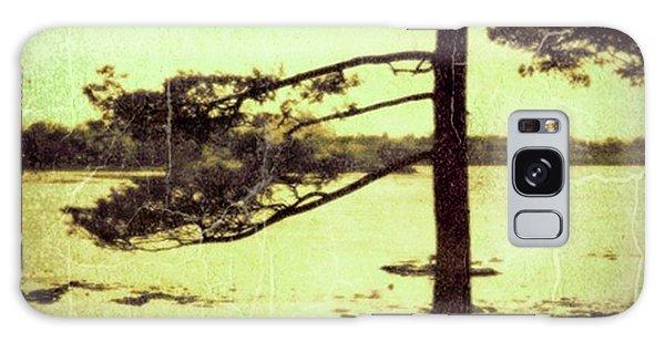 Northern Pine Galaxy Case