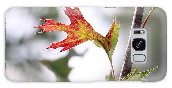 Oak Leaf Turning Galaxy Case