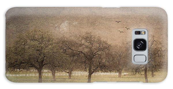 Oak Trees In Fog Galaxy Case