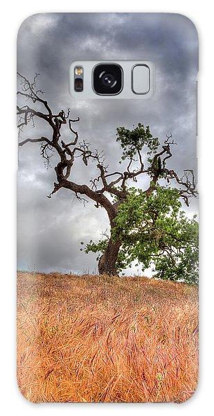 Old Oak Tree Galaxy Case