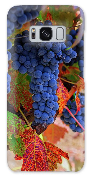 On The Vine II Galaxy Case