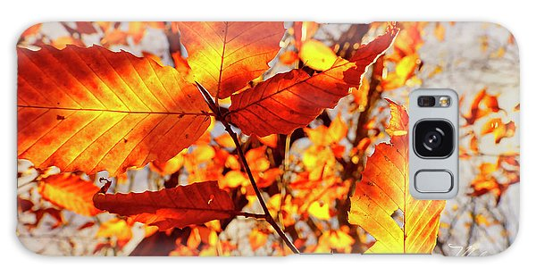 Orange Fall Leaves Galaxy Case