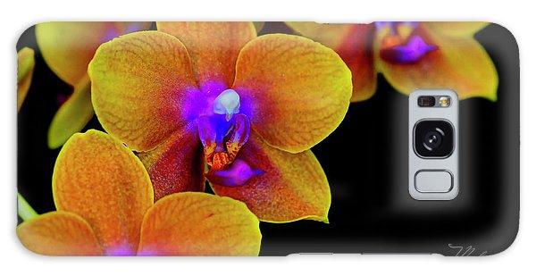 Orchid Study Ten Galaxy Case