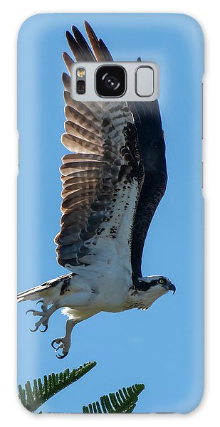 Galaxy Case featuring the photograph Osprey Taking Flight by Ken Stampfer