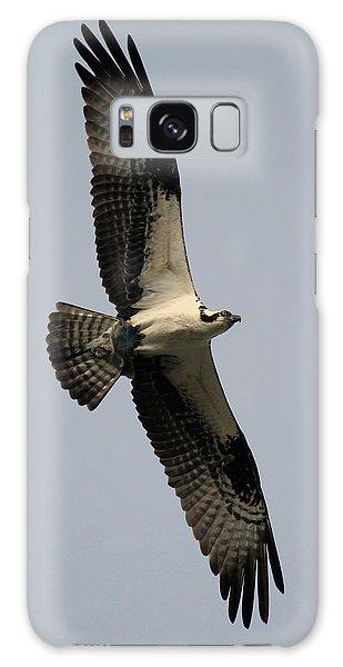 Osprey With Fish Galaxy Case