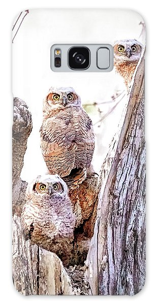 Owl Trio Standing Guard Galaxy Case
