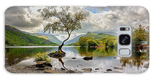 Galaxy Case - Padarn Lake Tree  by Adrian Evans