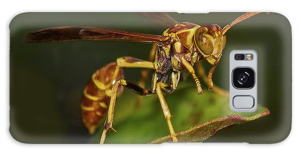 Paper Wasp Galaxy Case