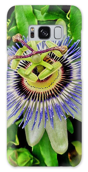 Passion Flower Bee Delight Galaxy Case