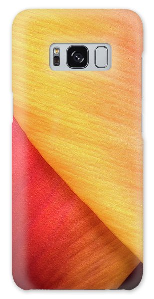 Galaxy Case featuring the photograph Pastel Curve  by Michael Hubley