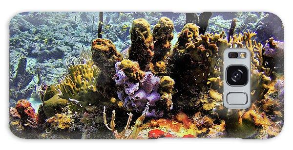 Patch Reef Bluff Galaxy Case