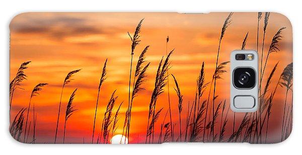 Dawn Galaxy Case - Peaceful Chesapeake Bay Sunrise In by Yvonne Navalaney