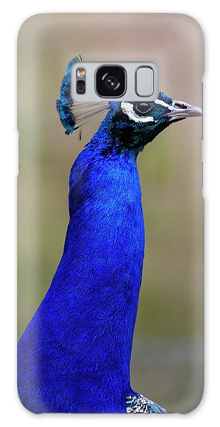 Peacocks Galaxy Case - Peacock by Smart Aviation