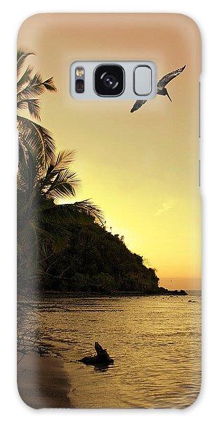 Pelican Sundown Galaxy Case