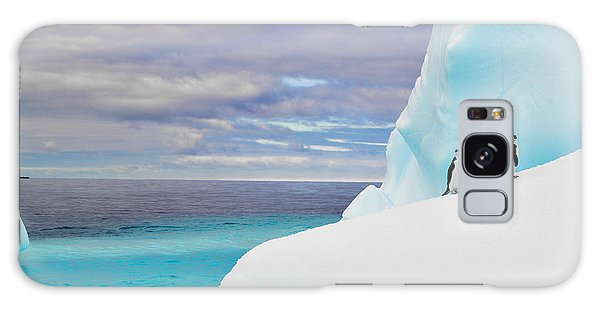 Environments Galaxy Case - Penguins In Iceberg In Antarctica Pole by 2j Architecture