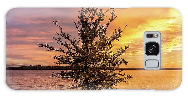 Percy Priest Lake Sunset Young Tree Galaxy Case