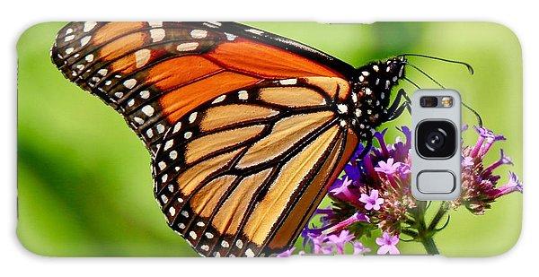 Perfect Monarch Galaxy Case