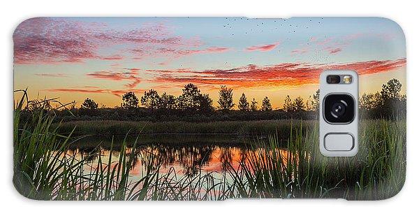 Phinizy Swamp Sunrise - Augusta Ga Galaxy Case