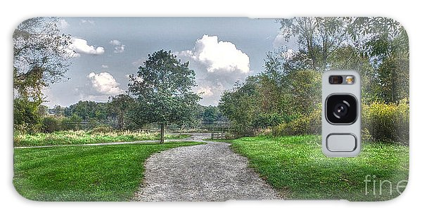 Pickerington Ponds Walkway Galaxy Case