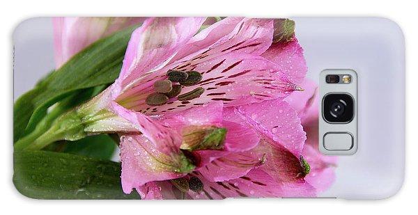 Pink Alstroemeria-4 Galaxy Case