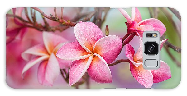 Bright Colors Galaxy Case - Pink Color Frangipani Flower Beauty by Focusstocker
