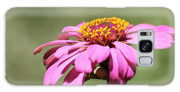Galaxy Case - Pink Coneflower In Pastel by Suzanne Gaff