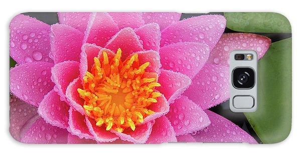 Pink Petals In The Rain  Galaxy Case