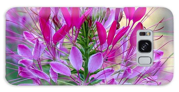 Pink Queen Flower Galaxy Case