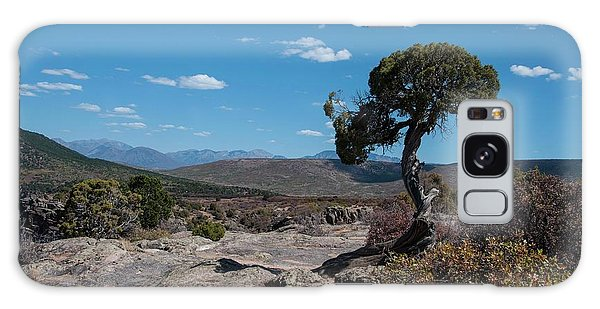 Pinyon Pine With North Rim In Background Black Canyon Of The Gunnison Galaxy Case