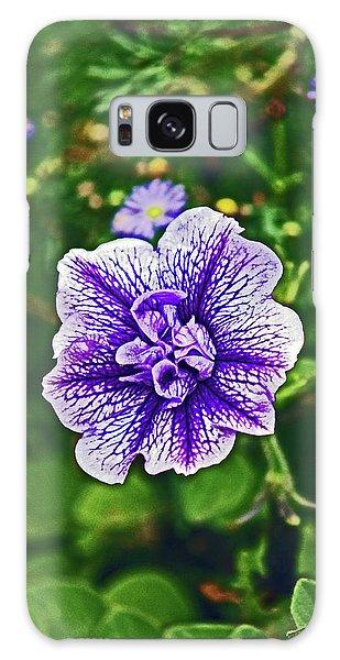 Pitlochry.  Purple Petunia. Galaxy Case