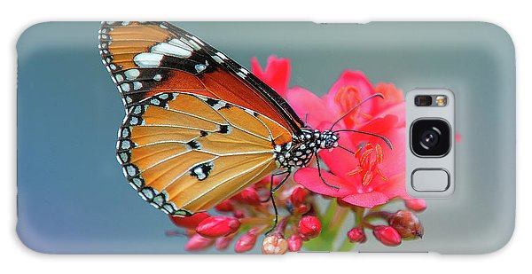 Plain Tiger Or African Monarch Butterfly Dthn0246 Galaxy Case