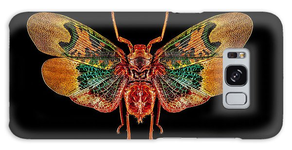 Planthopper Lanternfly Galaxy Case